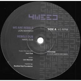 "Rick Wayne – Vocal E.P. | 10"" Roots Injection"