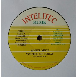 White Mice ‎– Youths Of...
