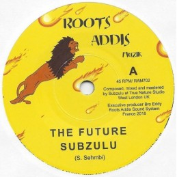 "Subzulu ‎– The Future (7""..."