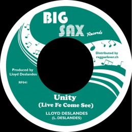 Lloyd Deslandes - Unity -...