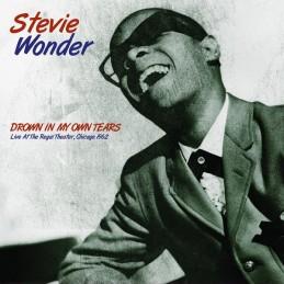 Stevie Wonder – Drown In...